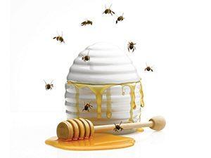 Auditing quiz bee